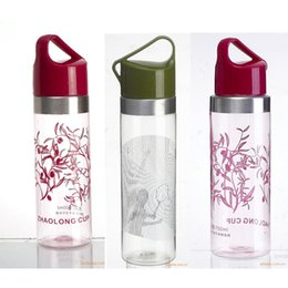 Wholesale 2016 Hot New Design Personalize LOGO ML Handle Space Cup Gift Water Bottle Advertising Cosmetic Products OEM