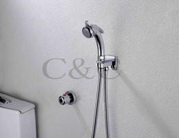 Multifunctional Thermostatic Pet Cleaner Wall Mounted Chrome Portable Shattaf Bidet Gun A801D