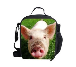 Wholesale 2015 D design bolsa termica lunch bag zoo animals for school boys new children s lunch boxs for kids pig style set lunch bag