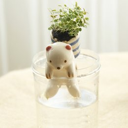 New creative lazy animal tail water potted plants potted indoor hydroponic plants wholesale absorption of formaldehyde