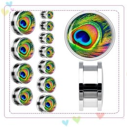 Wholesale New Fashion Hot Stainless Steel Screw Ear Plug Tunnel Stretcher Peacock Feather Styles Flesh Ear Gauge Expander