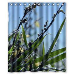 Wholesale Frost plant grass animate custom Shower Curtain Bathroom decor fashion design x72 quot x72 quot x72 quot x72 quot