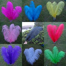 Wholesale_100 pcs a lot 6-22inch mix (random) Ostrich Feather Plume for Wedding Centerpieces table decoration