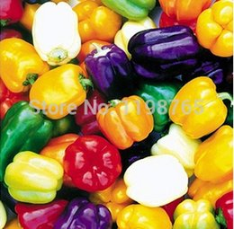 Wholesale 3 Color mixed Yellow Puple Red Green Blue White Mix Sweet Bell Hot Pepper Seeds vegetables Paprika