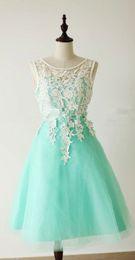 Wholesale 2015 New Lace Applique Beautiful Beach Bridesmaid Dresses Cheap Crew Sleeveless Bridesmaids Gowns Plus Size Short Party Dress