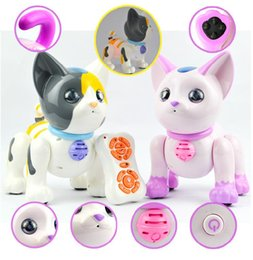 [New arrival] [Hot sale] Transpace intelligent remote control robot Lovely electric plastic animal model Child gift suitable
