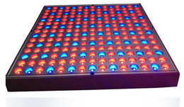 Wholesale LED Lights Blue Red w Indoor Garden Hydroponic chip Plant Grow Light Panel Aluminum Alloy