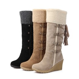 Wholesale New Arrival Snow Boots Women Wedges Knee High Boots Artificial Nubuck Lady Winter Boots Warm Tassel Shoes Size TZ0450