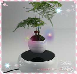 Wholesale 20 dhl free new creative magnetic floating levitron air plant potted display racks for home business gift