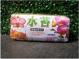 Wholesale Sphagnum moss bryophytes phalaenopsis Garden Supplies orchid medium moisturizing nutrition soil Organic Fertilizer
