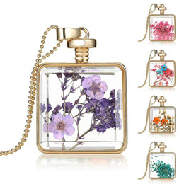 New trendy design natural plant real dried flower necklaces drifting bottle pendants glass ball pendant necklace women