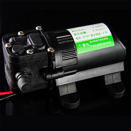 Wholesale 3 L min High Pressure Diaphragm Water Pumps Centrifugal Water Pump Mini DC V Self Priming Water Pump