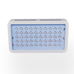 Wholesale 150W LED Grow light Lamp Best full Spectrum IR UV RED BLUE ORANGE WHITE For Flower Plants Grow and Flower grow led