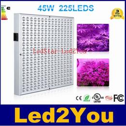 Wholesale Новые W светодиодный завод расти световой панели гидропоники Лампы AC85 V LED SMD2835 красный синий для цветущих растений Крытый Grow Box