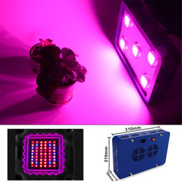 Wholesale BestVA X5 W LED Grow Light Newest COB Chips Sunlight Full Spectrum best for plant growth and bloom High Yeild Blue