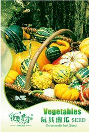 Wholesale Garden toy pumpkin Seeds Vegetables bag rainbow pumpkin home garden Plant seeds bags per