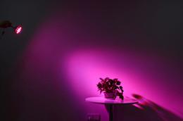 Promotion led grow bleu ampoule 24W 12LED Rouge Bleu E27 hydroponique usine médicale Veg Flower LED Grow Light Bulb