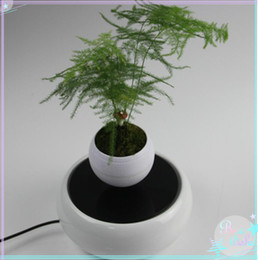 Wholesale 5 dhl free new magnetic bottom air bonsai plant flower pots display racks rotating maglev plant display stands