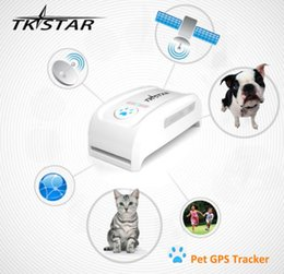 Wholesale super mini TK909 waterproof tracker Real time GSM GPS Pet Tracker dog cat Pet personal gps tracker IOS Andriod App free website service
