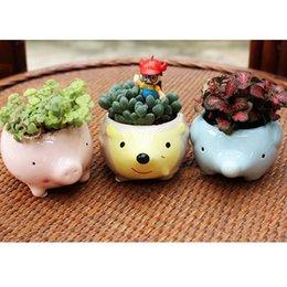 Wholesale Mini Ceramic Kawaii Flower Pot Succulents Bonsai Pots Garden Planters Desktop Flowerpot Animal Shape