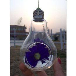 Wholesale Glass Bulb Lamp Shape Flower Water Plant Hanging Vase Hydroponic Container Home Office Wedding Decor