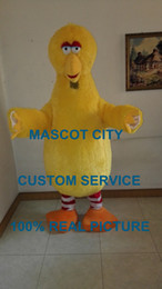 Wholesale big yellow bird mascot sesame street costume cartoon character cosply made carnival costume fancy costumes