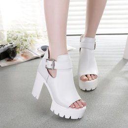 2016 new spring autumn casual high-heeled shoes sexy ruslana korshunova thick heels platform pumps Black and White