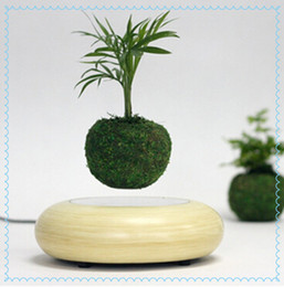 Wholesale 20 dhl magnetic floating air bonsai gift items indoor mini bonsai plant for home decoration