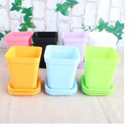 Wholesale 300sets Bonsai Planters Plastic Table Mini Succulents Plant Pots and Plate Gardening Vase Square Flower Pot Colorful WA0586