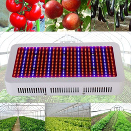 Wholesale Full Spectrum W LED Grow Light Red Blue White UV IR AC85 V SMD5730 Led Plant Lamp Best For Growing and Flowering Lights