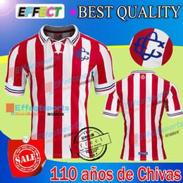 Wholesale 2016 Mexico Club La playera de aniversario que conmemora años de Chivas Soccer Jersey A PULIDO I BRIZUELA Maillot de foot shirt