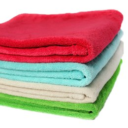 Wholesale Warm Cozy Practical Pet Dog Kitten Coral Fleece Handcrafted Blanket x40cm Car Multicolor Easy Wash