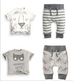 Wholesale 2016 nueva ropa infantil del bebé del niño del cabrito del verano de la manera del diseño determinado el animal imprimió la camiseta el harem jadea los juegos del algodón