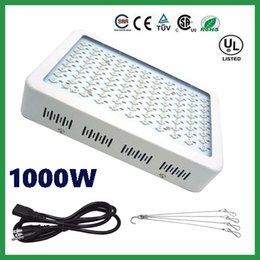 Wholesale Super Discount Recommeded High Cost effective W LED Grow Light with band Full Spectrum for Hydroponic Systems years warranty