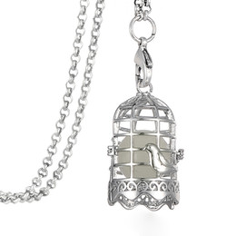 Vintage Silver Essential Oils Diffuser Ball Birdcage Bird Cage Locket Pendant Necklace Nature Jewelry Glow in the Dark