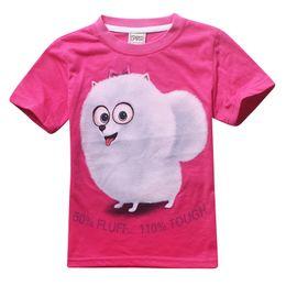 Wholesale Cartoon Shirts For Girls - 4-12YThe Secret Life of Pets Cartoon Clothes short sleeve cotton Printed tee shirt for kids girls boys 2016 Summer new tee tops for children