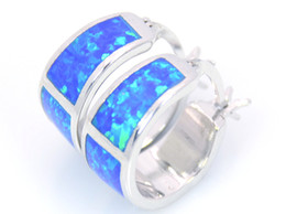 Wholesale & Retail Fashion Blue Fine Fire Opal Earrings 925 Silver Plated Jewelry EMT16042605