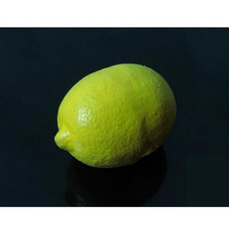 Rubber Fake Lemon,soft material,only gimmick - Close up magic trick ,Metal stage magic magic props