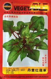 Wholesale Vegetable seeds The Danish red violet grass health care vegetable seeds Blood calcium The balcony potted vegetable grams bag