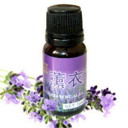 lavender essential oil compound douyin to scar skin care oil 10ml sterilization D66 oil control skin care