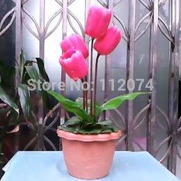 Wholesale Regeneration Tulip animate tulip Stage flower magic trick Magic trick classic toys