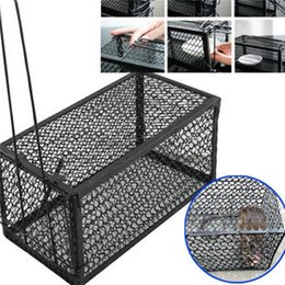 Wholesale Funny Rodent Animal Mouse Humane Live Trap Hamster Cage Mice Rat Control Catch Bait Pest Control Tools
