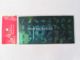 ZK series Nail Art Image Stamp Stamping Plate +1 WHITE stamper set Manicure tools Nail Art Templates