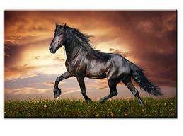 Скидка окрашенная лошадь DP ARTISAN красивый черный конь Роспись печать на холсте для домашнего декора картины маслом искусства не обрамленные настенные панно