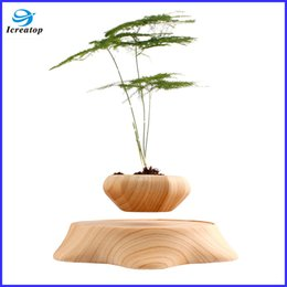 Wholesale High quality floating plant pot fashion levitating bonsai good for your health