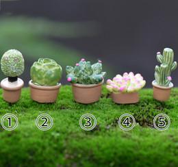 5pcs Kawaii Cactus Pot Fairy Garden Miniatures Terrarium Baison Tools Dollhouse Toys Landscape Zakka Decor Gnomes Jardim Home Accessories