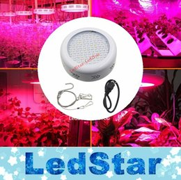 Wholesale Factory Lowest Price UFO Led Lamp Grow Full Spectrum Growing Plants Light W SMD5730 nm nm nm nm for Aquarium Grow Box Tent