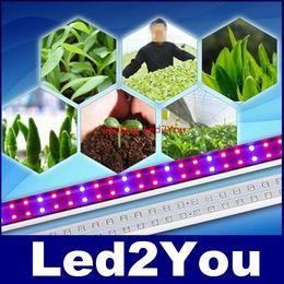 Скидка красные синие цветы Горячий продавая 2ft 3ft 4ft 5ft T8 пробки СИД растет свет водить цветок растет свет для растений в тепличных красный / синий AC 110-240В