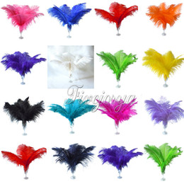 Wholesale 13 Colors quot Ostrich Feather Wedding Ostrich Plume Wedding Center Party Piece Table Decoration Ostrich Feathers