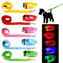 Wholesale Led Pet Dog Puppy Cat Kitten Soft Glossy Reflective Collar And Leash Safety Buckle Pet Supplies Products Colorful